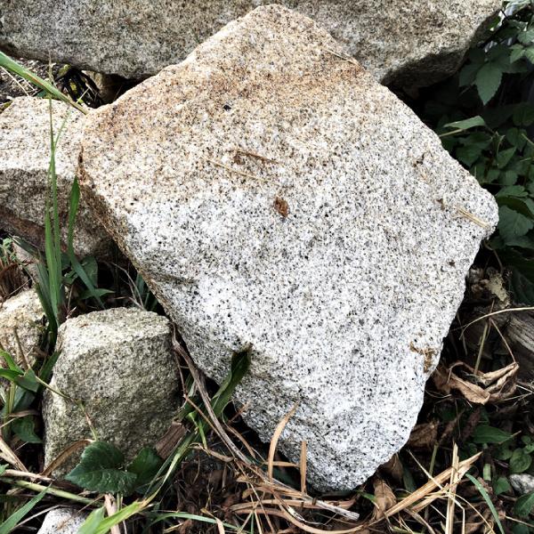 蛭川御影石